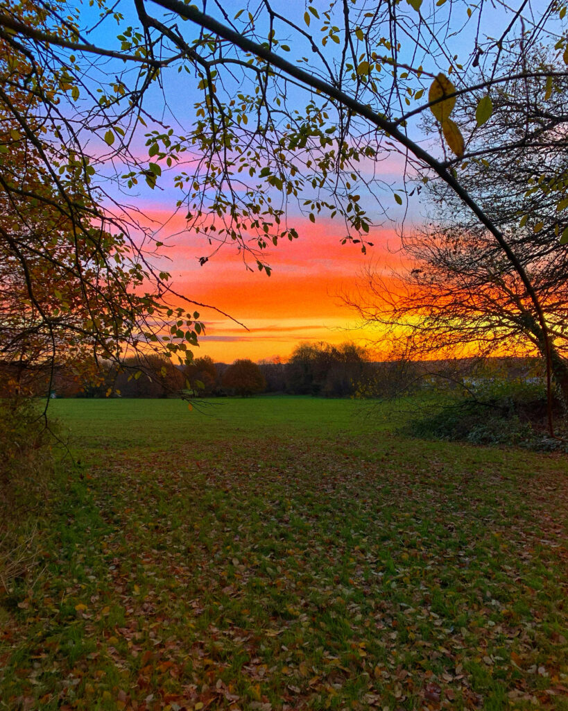 Sunset in a field, with the sky shades of blues, pinks, oranges and yellows